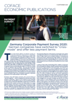 Mini_Germany-corporate-payment-survey-2020_medium